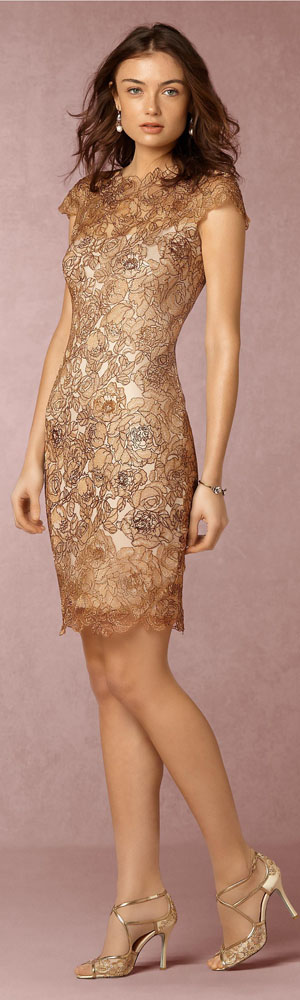 Cocktail Dresses | Evening Out & Party Dresses